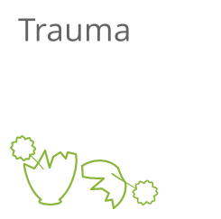 Trauma Icon weiß